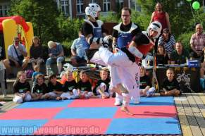 kampfsport-show-wedding-081