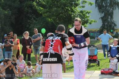 kampfsport-show-wedding-090