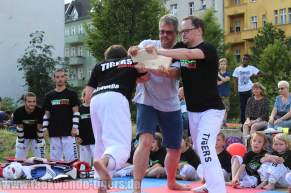 kampfsport-show-wedding-103