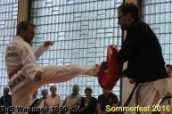 tus-wannsee-sommerfest-2016-217