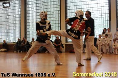 tus-wannsee-sommerfest-2016-233