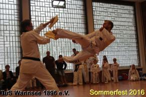 tus-wannsee-sommerfest-2016-253