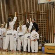 Taekwondo Tigers Berlin Gürtelprüfung