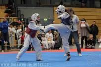 taekwondo_berlin_startercup_greifswald-32
