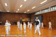 Prüfungsvorbereitung Taekwondo Tigers Berlin