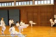 taekwondo-reinickendorf-wedding-berlin-pruefung-15