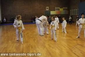 taekwondo-reinickendorf-wedding-berlin-pruefung-19