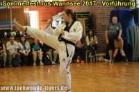 taekwondo-tus-wannsee-sommerfest-reinickendorf-wedding-berlin-32
