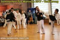 taekwondo-tus-wannsee-sommerfest-reinickendorf-wedding-berlin-34