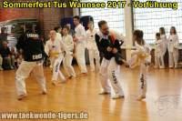 taekwondo-tus-wannsee-sommerfest-reinickendorf-wedding-berlin-38