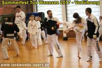 taekwondo-tus-wannsee-sommerfest-reinickendorf-wedding-berlin-39