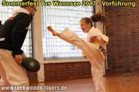 taekwondo-tus-wannsee-sommerfest-reinickendorf-wedding-berlin-44