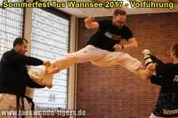 taekwondo-tus-wannsee-sommerfest-reinickendorf-wedding-berlin-50