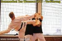 taekwondo-tus-wannsee-sommerfest-reinickendorf-wedding-berlin-51