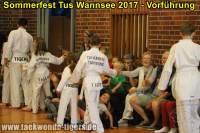 taekwondo-tus-wannsee-sommerfest-reinickendorf-wedding-berlin-54