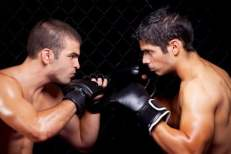 Mixed Martial Arts Remscheid