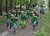 Waldjugendspiele_2013_14