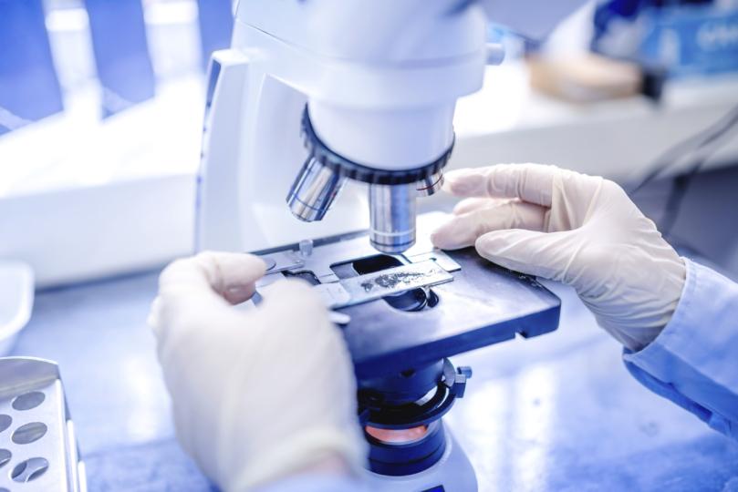 В РУз начнет действовать грантовая программа по повышнию качества исследований