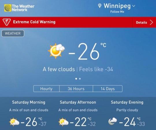 Winnipeg Forecast Display