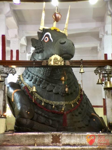 Bangalore Running & Walking Tours- Bull Temple