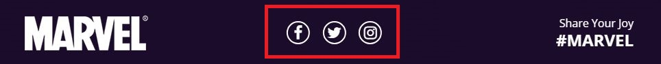 Banner Social Icons