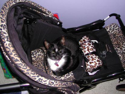 In her stroller