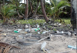 Example of trash seen on all beaches