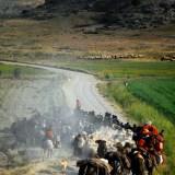 Tahir Özgür The Last Nomads-0107