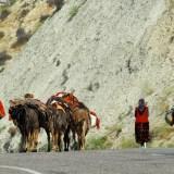 Tahir Özgür The Last Nomads-0113