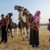 Tahir Özgür The Last Nomads-0130
