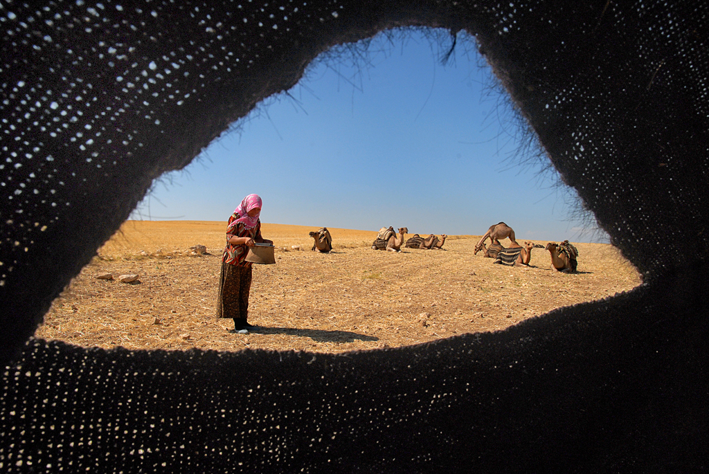 Tahir Özgür The Last Nomads-0132