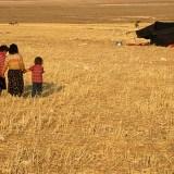 Tahir Özgür The Last Nomads-0153
