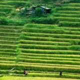 Tahir Özgür Vietnam-Cambodia-132