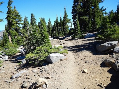 Trail from Dick's Pass