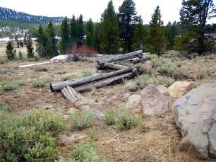 Split log fence along TRT