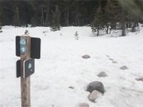 TRT trail junction