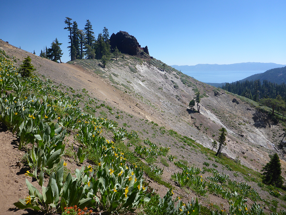 20-Mule's Ears and Lake Tahoe