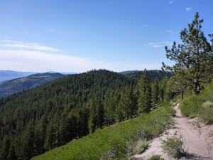 42-Tahoe Rim Trail