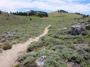 43-Sage Fields Above Marlette Lake