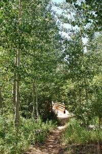 65-Bridge over Grass Lake Creek