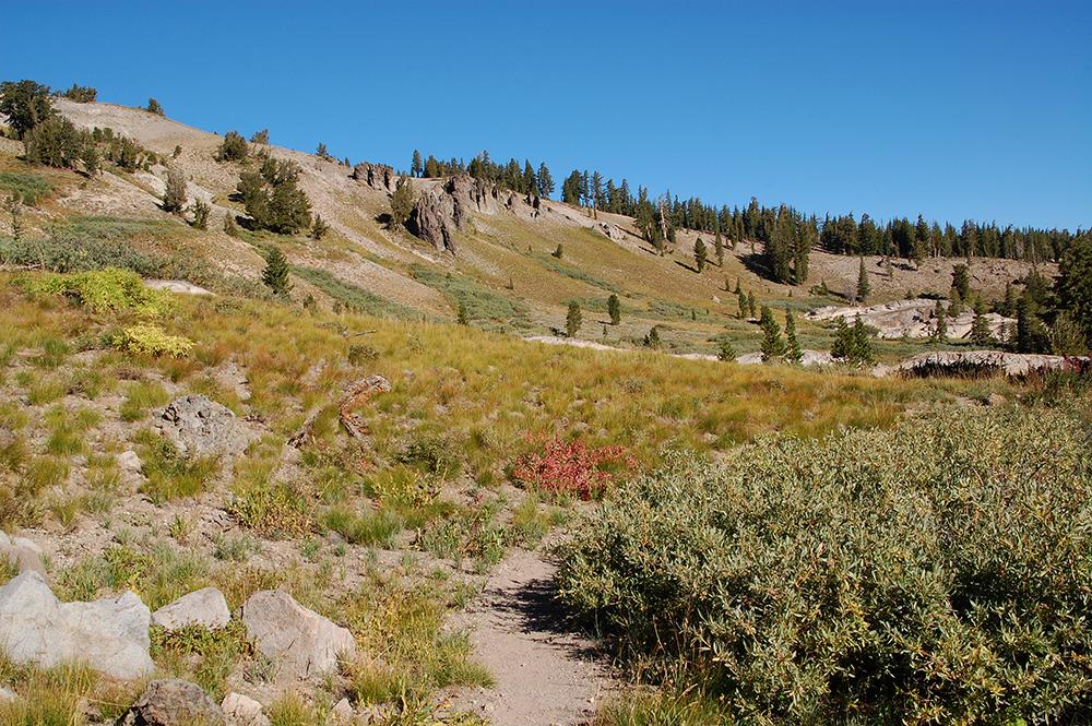 75-Tahoe Rim Trail South of Echo Summit