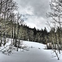 An Ode to Cross-Country Skiing or My First Overnight Cross-Country Ski Tour