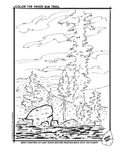 Bonus Page 8: Brief Sighting of Lake Tahoe