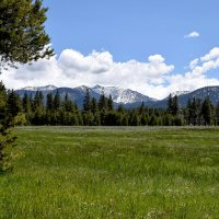 Hiking Washoe Meadows State Park