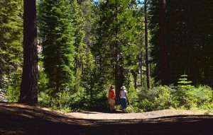 Two women hiking along the Meek's Creek Trail
