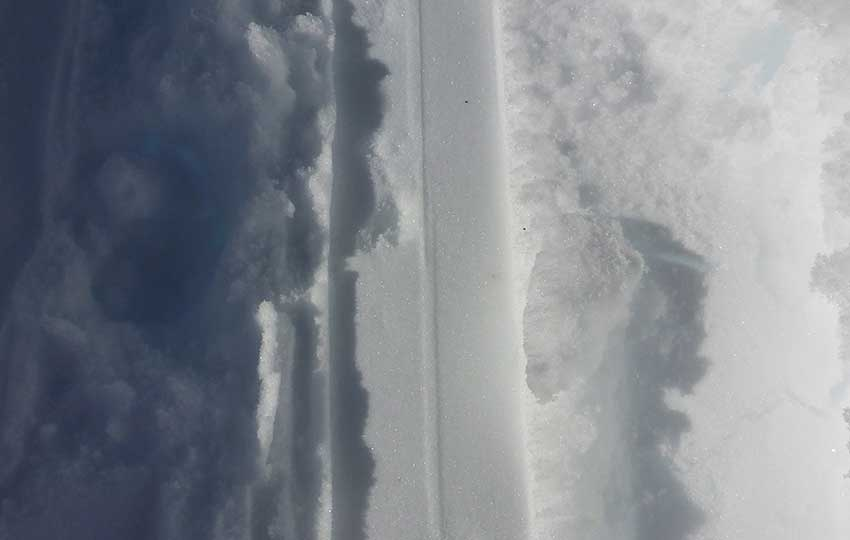 Tracks in the snow made by cross-country skis