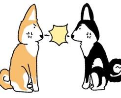 【西郷どん(せごどん)】第40話あらすじ(ネタバレ)!