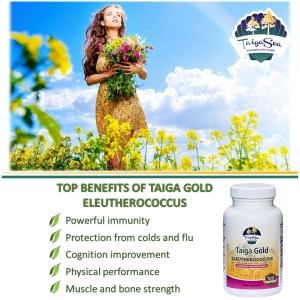 Taiga Gold with Eleuthero