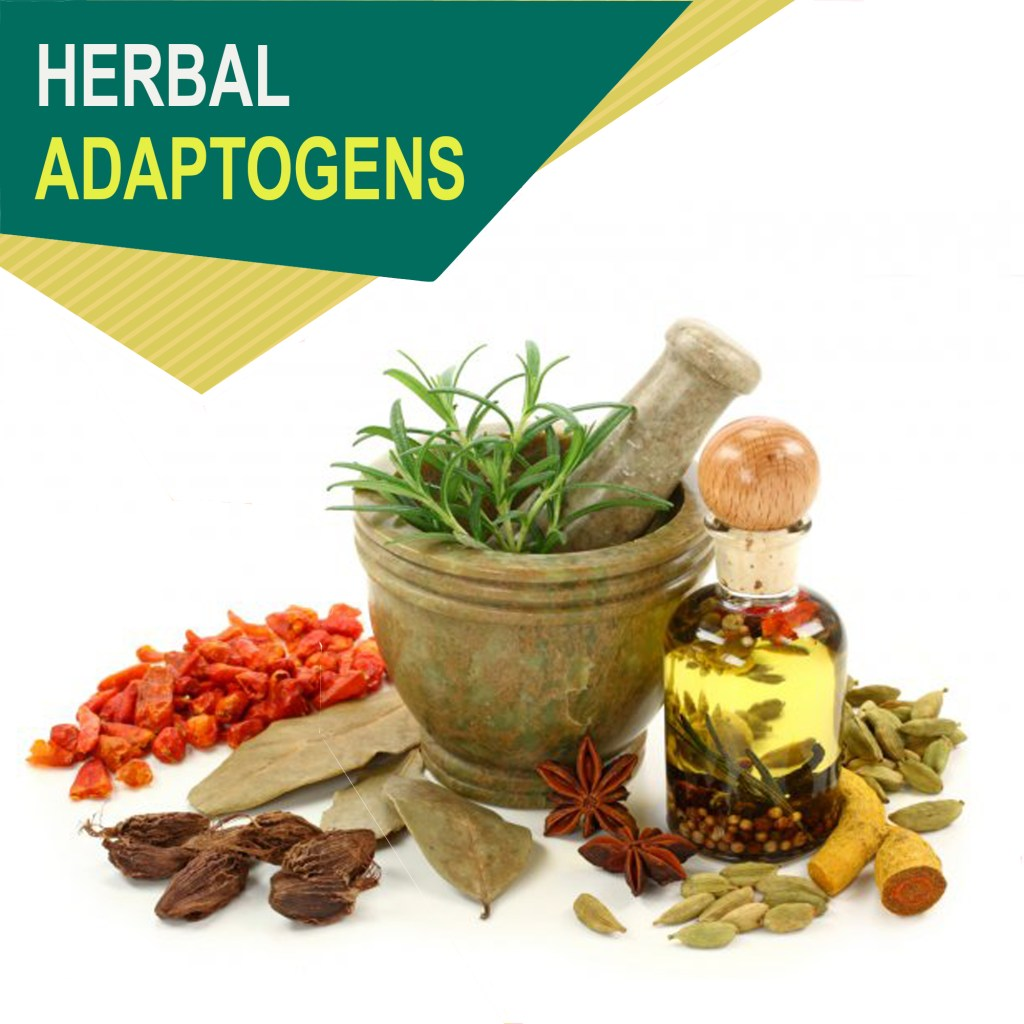 Herbal adaptogens