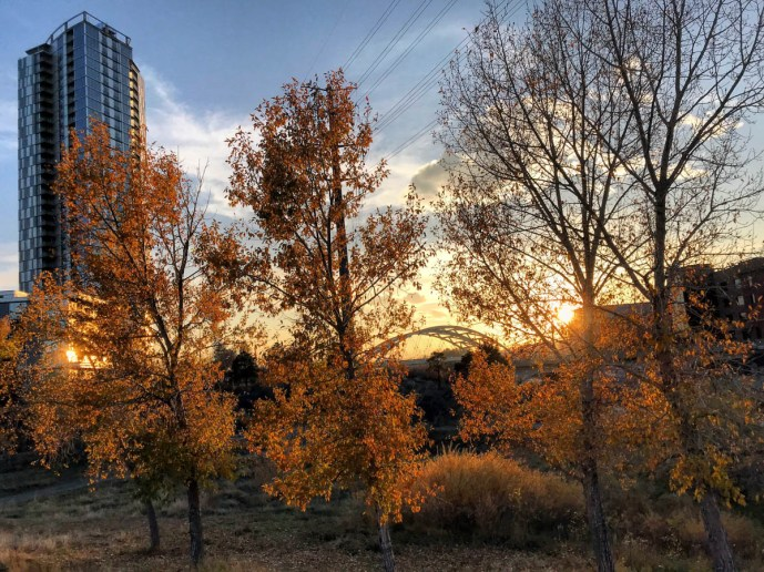 Denver365_2017 - 307